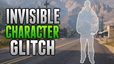 Photo of INVISIBLE CHARACTER GLITCH (TUTORIAL)